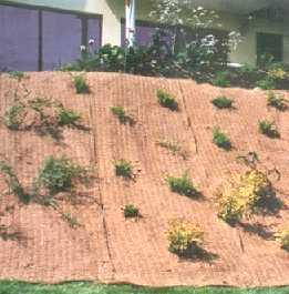 g otextile plantation membrane egout sous sol. Black Bedroom Furniture Sets. Home Design Ideas