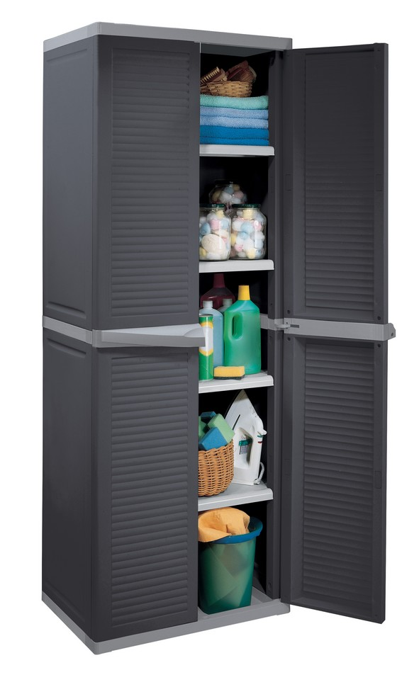 Armoire anthracite 650x450x1760 mm